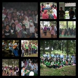 training organization